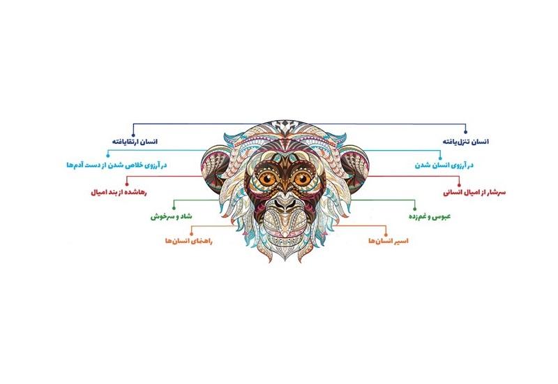 میمون در فرگشت تاریخی